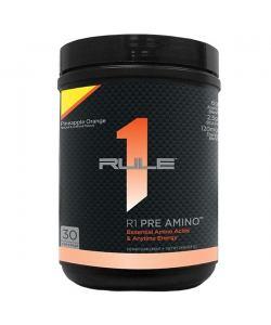 Rule1 R1 Pre Amino (249 гр.)